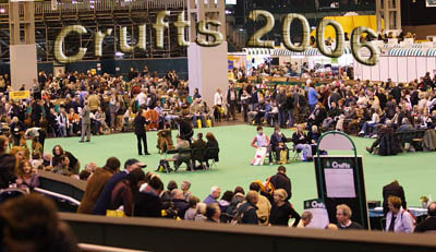 <<  CRUFTS 2006 PICTURES  &gt;&gt;